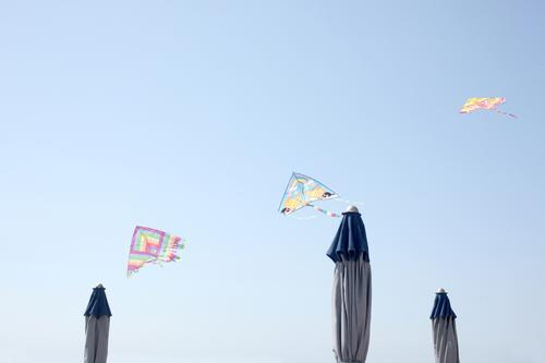 row of toy kites flying over sun umbrella blu sky summer sea beach childhood fun game play leisure copy space print color image horizontal shore flying kites