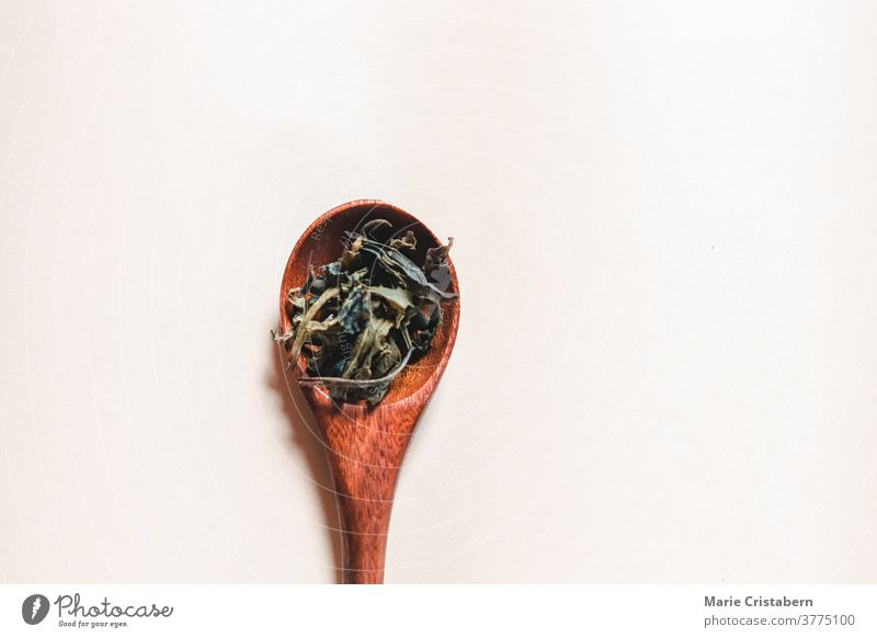 Flat lay of dried cannabis leaves or marijuana on a wooden spoon for recreation and medical use cannabinoids psychoactive alternative medicine cannabis sativa