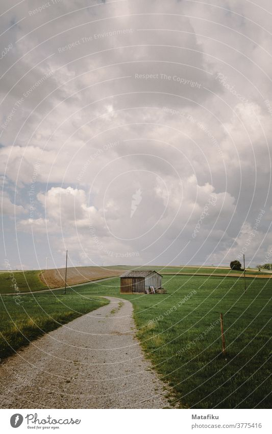 dirt road off the beaten track Nature Field Landscape Exterior shot Meadow Colour photo Sky Environment Deserted Grass green Day Summer Clouds Weather natural