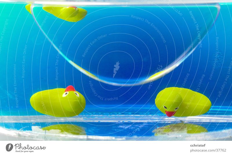 Water Blue Yellow Bathroom Statue Duck Room Soap dish