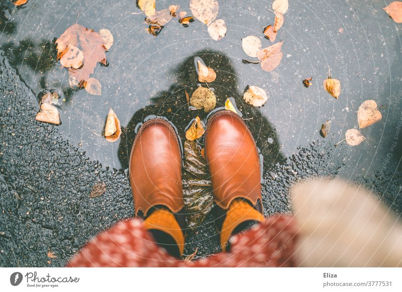 Autumn. Feet with boots stand in a puddle of leaves Autumn leaves Puddle Water foliage Rain Autumnal Wet Boots feet Woman Dress autumn colours Autumnal colours