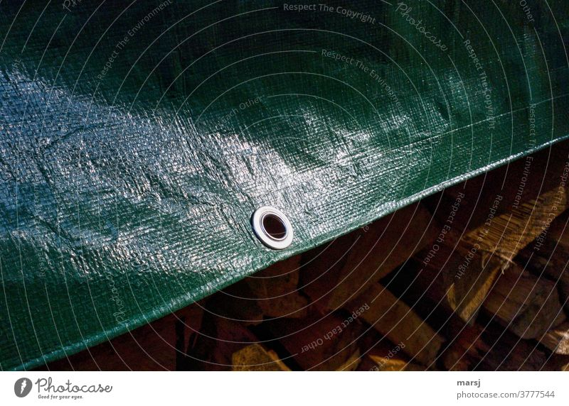 Metal eyelet in green tarpaulin, which protects a stack of firewood from moisture. Eyelet Glittering schtu Protection Plastic Detail Structures and shapes