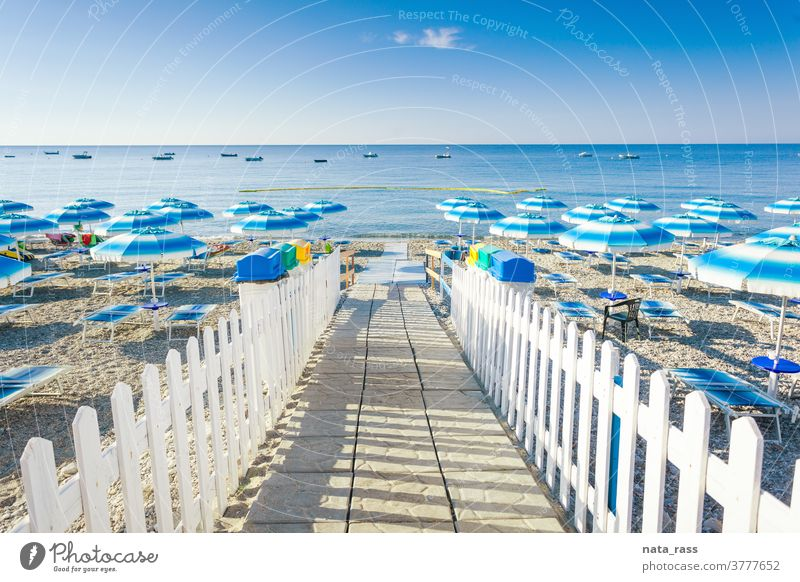 Path to beach with umbrellas and chaise-lounges in Calabria recycling bin travel seascape horizon sunshade shore sunny sunlight idyllic nobody blue tourism