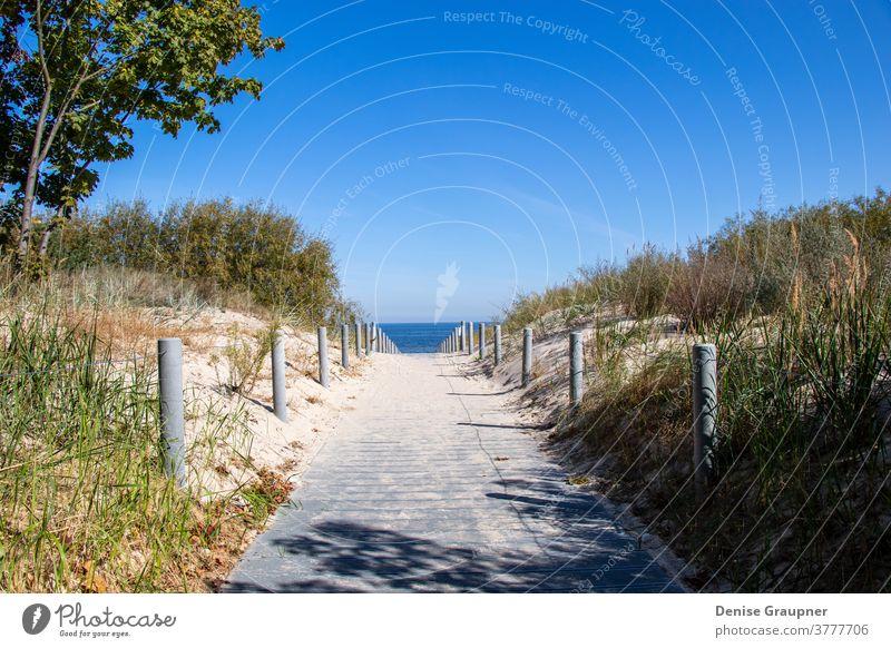 Way to the beach of the Baltic Sea on Usedom coast germany sea sky usedom way baltic ocean island vacation path sand dune grass horizon landscape summer water