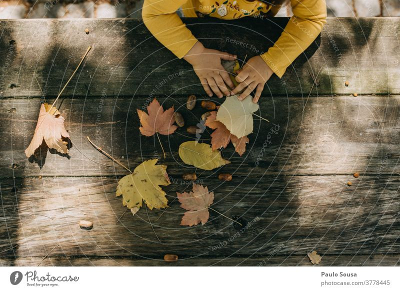 Child playing with autumn leaves Autumn Autumnal Autumn leaves Authentic Autumnal colours fall Environment Autumnal weather Tree Day Exterior shot Nature