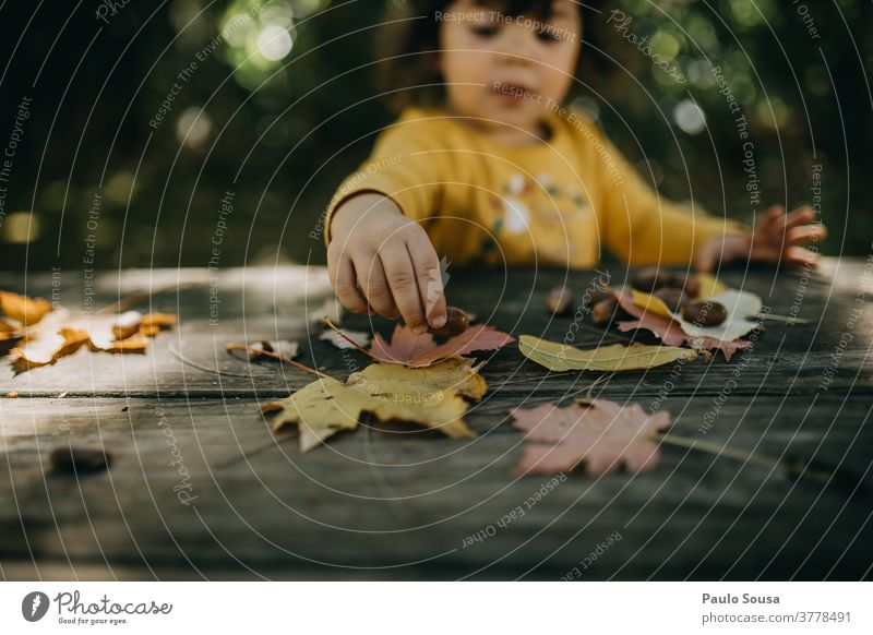 Child playing with autumn leaves childhood Autumn Autumn leaves fall Autumnal colours Early fall Day Exterior shot Sunlight Tree Colour photo Twigs and branches