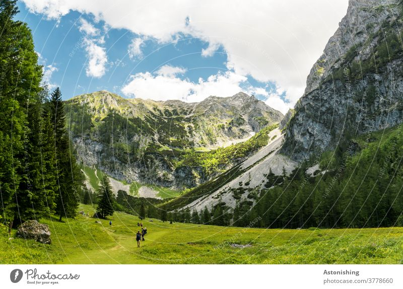 hiking in the alps mountain Peak Alps Pyhrgas Meadow Hiking Austria Rock Tall Steep up Valley tree Forest Sky Vantage point Clouds Nature Landscape Stone