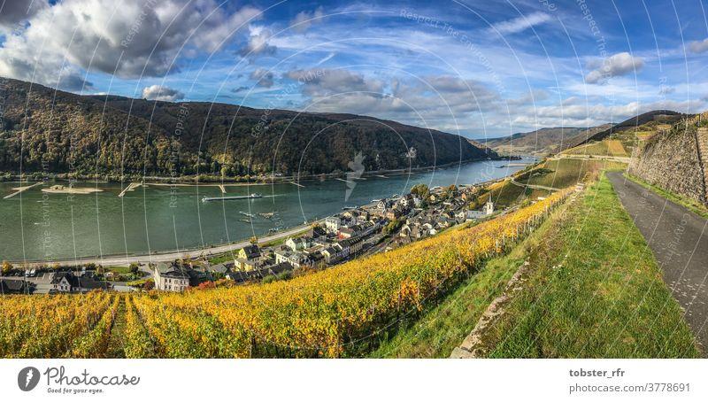Assmannshausen on the Rhine Middle Rhine Valley World Heritage vineyards Wine growing