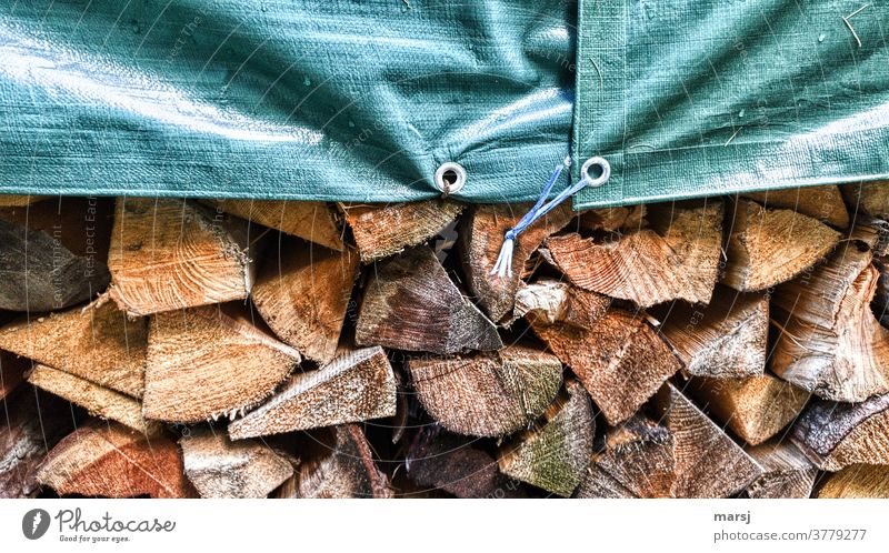 Closely connected, the two tarpaulins lay on top of each other, gently nestled against each other, and together protected the pile of firewood. They were held only by a blue string and a nail.
