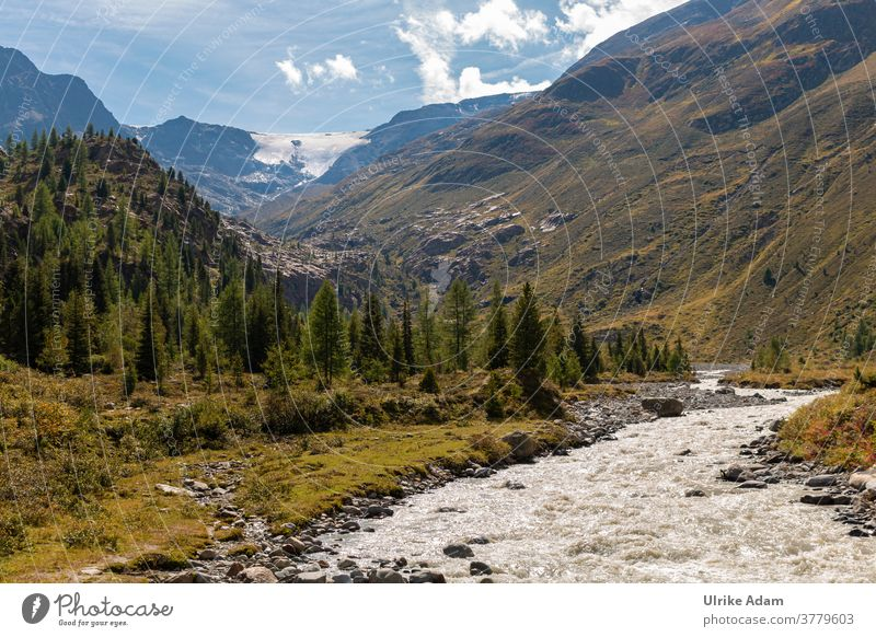 View of the Weißseeferner Glacier in the Kaunertal Valley in Tyrol / Austria travel vacation mountains Alps White Lake Remover Brook trees Mountain