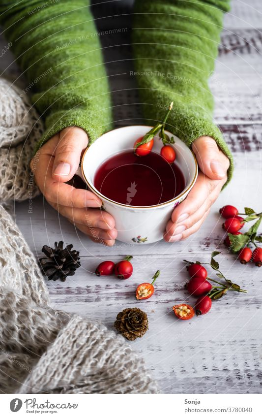 Woman holding a cup of rosehip tea in her hands Tea Rose hip Autumn Shallow depth of field Hot drink hygge Cup stop warm sb./sth. Winter Vitamin Wool sweater