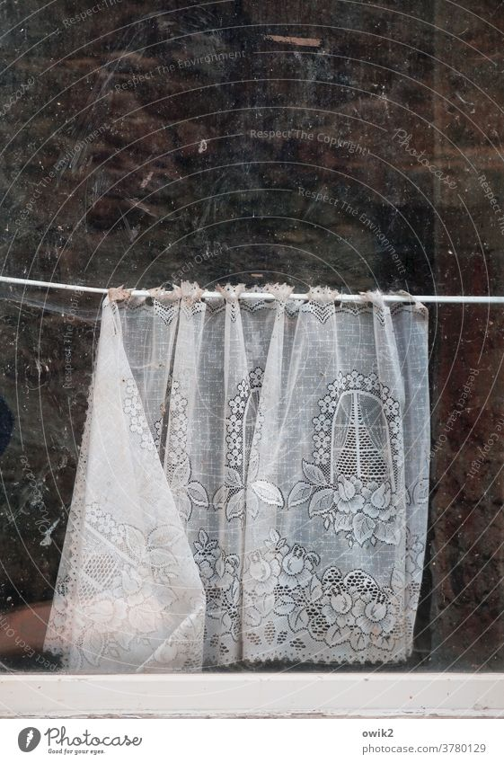 Window in window Curtain Detail Long shot Copy Space top Gloomy lost places Subdued colour Pattern Structures and shapes Deserted Colour photo Invalided out