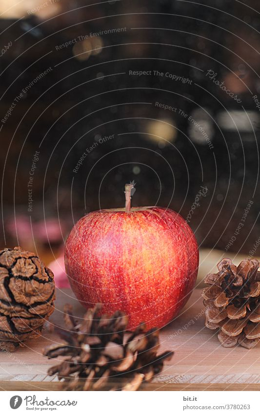 Red apple and fir cone with light spots. Apple Fruit Healthy Nutrition Delicious Organic produce Food Vegetarian diet Healthy Eating naturally fruit Fruity