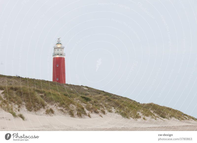Lighthouse on Texel Illuminate Beacon Beach duene Netherlands North Sea Ocean Clouds coast Sky Exterior shot Colour photo Landscape Vacation & Travel Nature