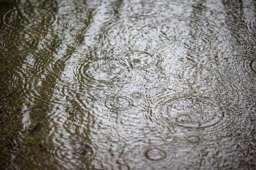 raindrops fall into water on a rainy day and form concentric circles Autumn Drops Raindrops autumn weather bad weather copy space dripping falling flood