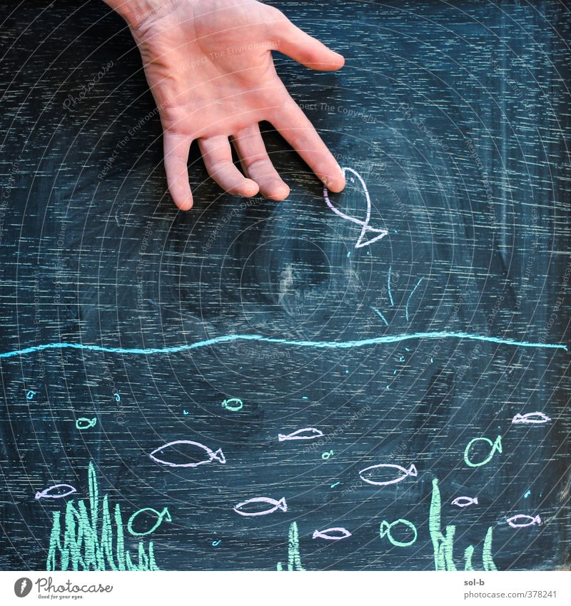 ow! Hand 1 Human being Water Group of animals Aggression Brash Original Black Caution Dangerous Anger Force Creativity Chalk drawing Fish Art Image Funny Joke