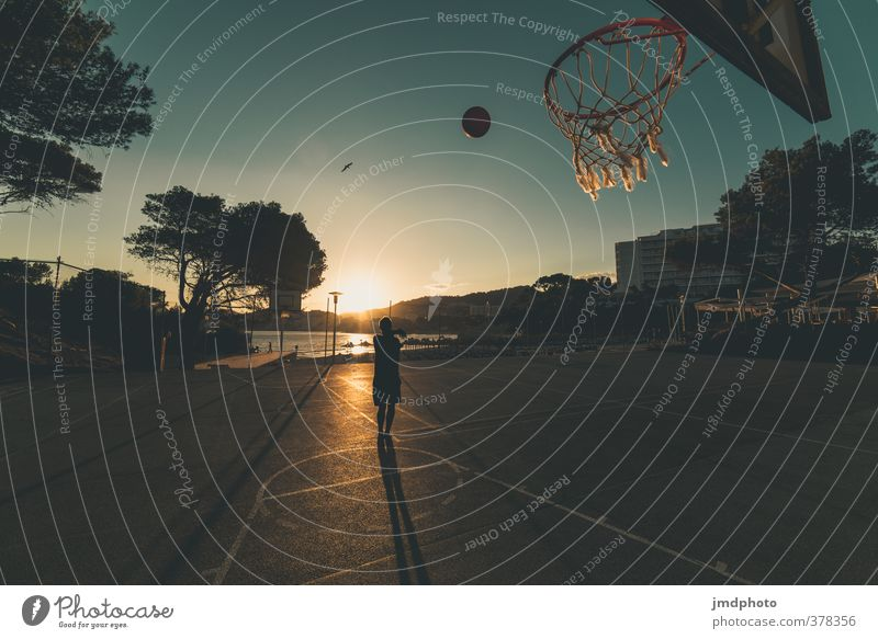 basketball player Lifestyle Playing Summer Summer vacation Sun Beach Ocean Sports Fitness Sports Training Sportsperson Basketball basket Basketball player Ball