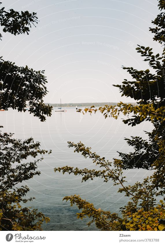 Lake Starnberg Aquatics Water reflection Reflection Sports Movement Relaxation tranquillity relaxation bathe Clouds Blue Bavaria vacation holidays voyage