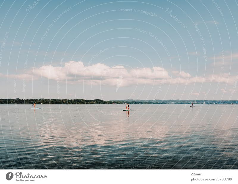 Stand-Up-Paddling at the Starnberger See stand-up paddling Aquatics Water Lake reflection Reflection Sports Movement Relaxation tranquillity relaxation bathe