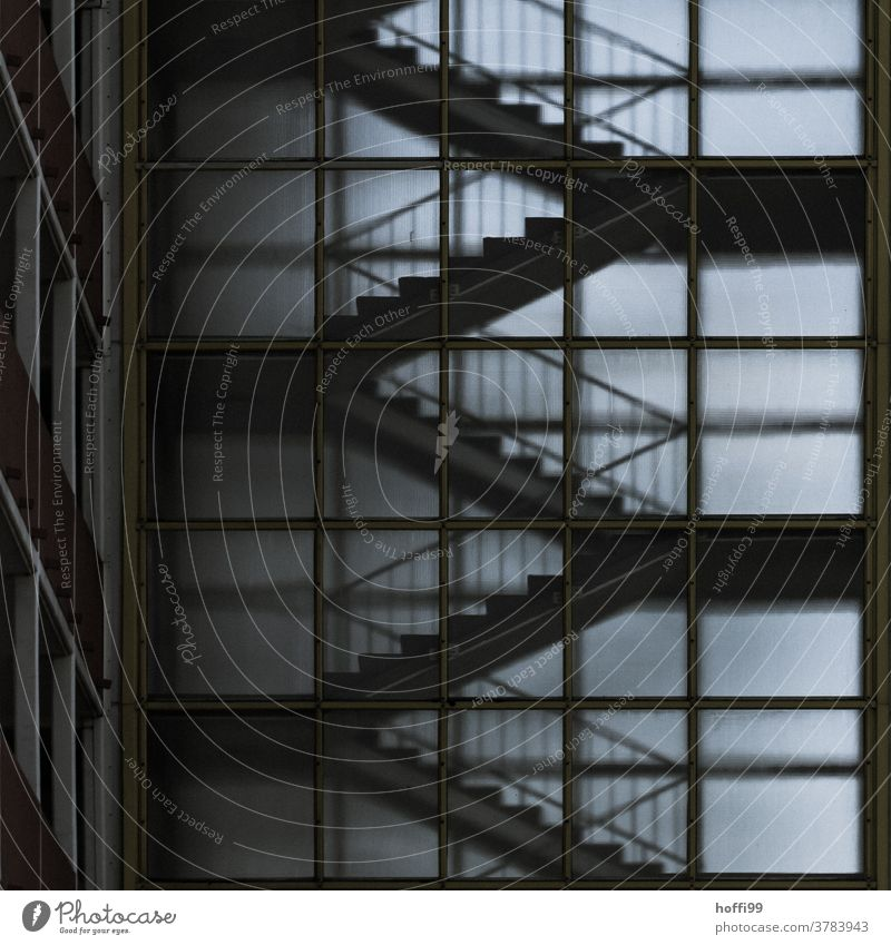 Transparent staircase Staircase (Hallway) Stairs Banister somber Dark Diffuse transparency High-rise Architecture architectural photography Landing Facade