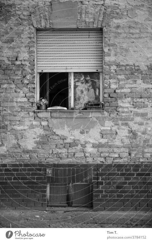 Window Babelsberg b/w Black & white photo window B/W B&W Loneliness Architecture Detail Old building Facade Potsdam Dark