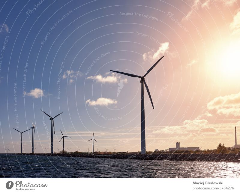 Wind turbines on the coast at sunset. wind green energy water sea industry Denmark landscape generator environment nature sky concept picture energy generation