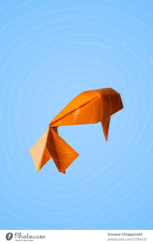 Origami orange golden fish on light blue background Fish origami paper Golden fish Koi Koi Carps Orange Light blue Animal Colour photo