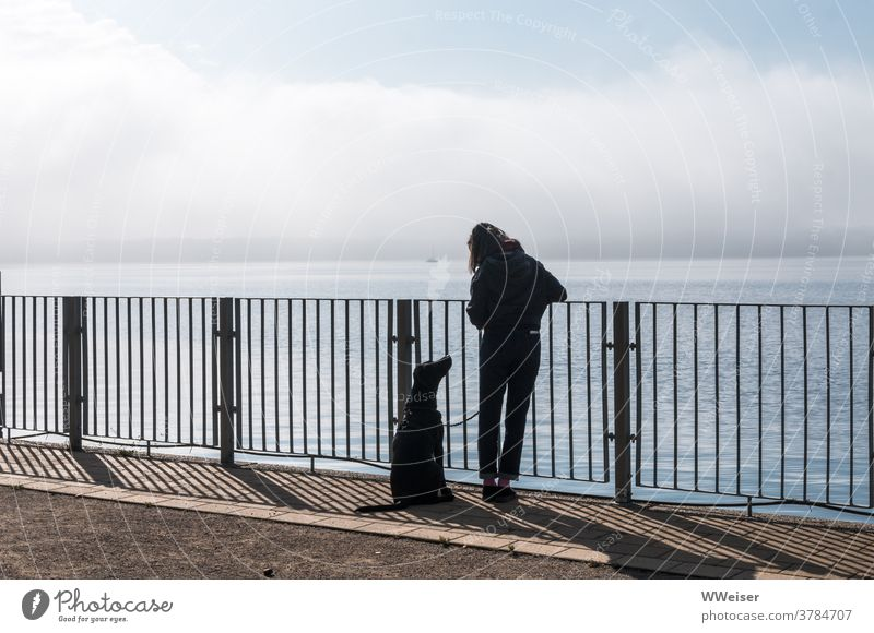 The two of you at the lake with man's best friend Dog Girl Woman eye contact Shadow Lake Water bank rail Fence Horizon Body of water Vantage point Sky Morning