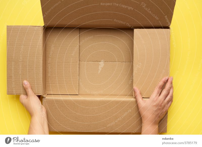 female hands are holding an empty open box of brown cardboard, top view bottom business cargo move backdrop background blank carton caucasian clean container