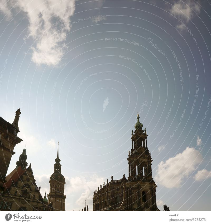 Baroque lace Dresden Downtown Church Manmade structures Building Dresden Hofkirche Tourist Attraction Landmark Monument Large Tall Religion and faith Belief
