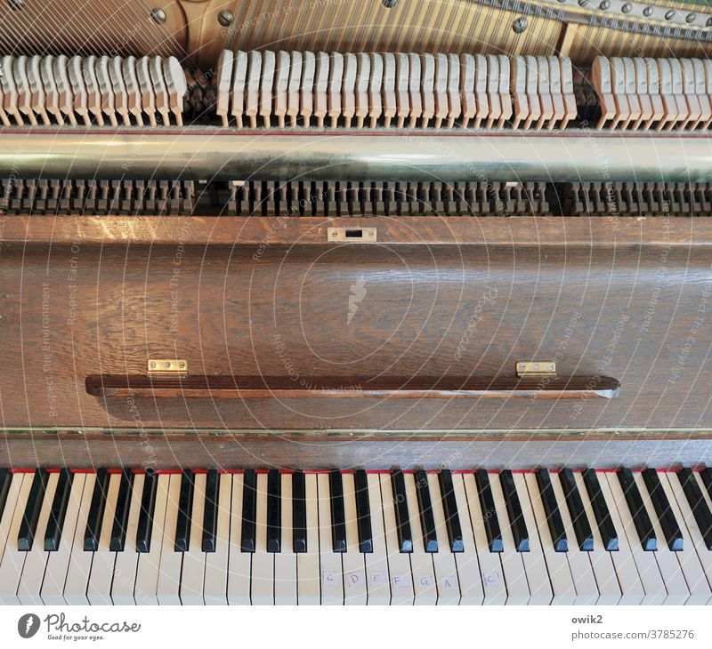 Music School Piano dusty Detail Musical instrument Keyboard instrument Dusty Close-up Subdued colour Interior shot interior view Many Leisure and hobbies