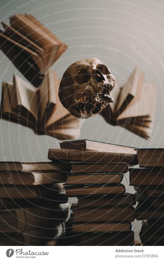 Human skull and stacked books fly levitate old spooky halloween cranium concept knowledge literature vintage antique scary ancient page mystic creepy horror