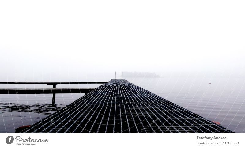 White and foggy day on a dock Harbour Water lake quiet white Nature contrast Morning Autumn Reflection Loneliness Calm Landscape Moody Maritime Exterior shot