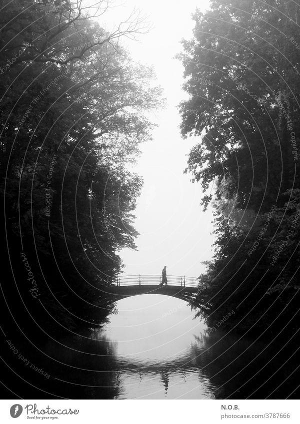 A man walks across a bridge in the fog, black and white Fog Tree Bridge Exterior shot Gray Black Autumn Black & white photo black-and-white