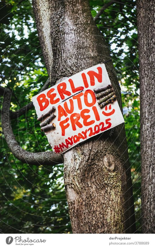 A tree holds a sign with the wish for a car-free Berlin Deep depth of field Shadow Light Morning Copy Space bottom Copy Space top Deserted Structures and shapes