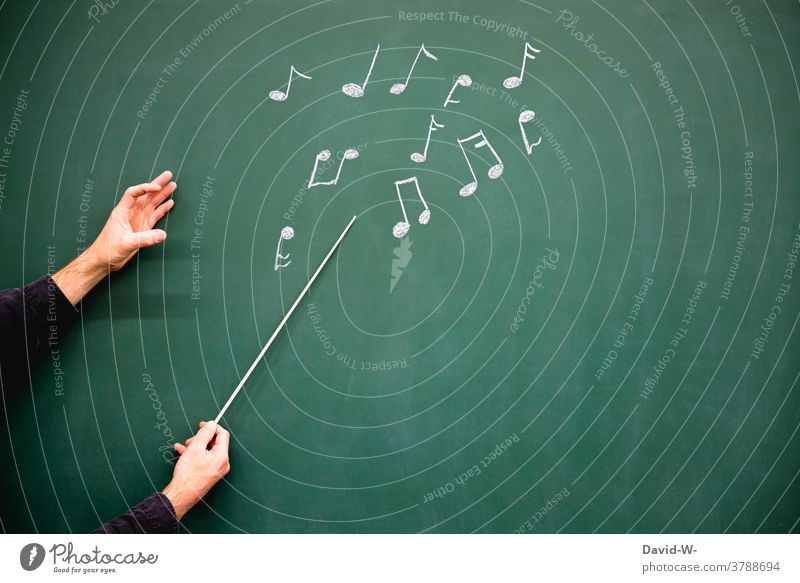 Conductor with baton and notes - music is in the air conduct Music Musician musical Art Cultures Artist Concert Listen to music Colour photo Sound tones hands