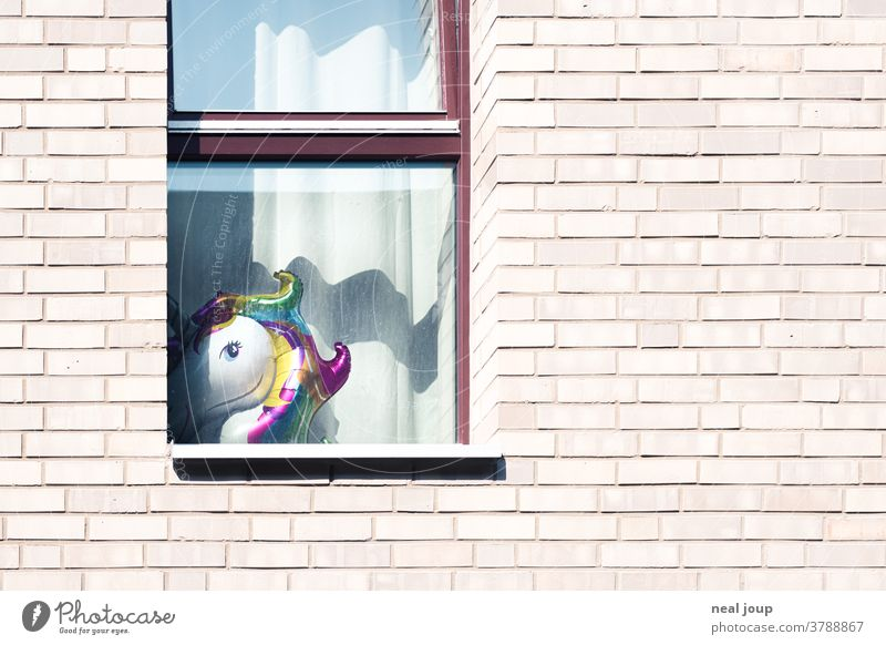 Brick facade with window and unicorn balloon Facade Apartment Building Window House (Residential Structure) Living or residing Apartment house Wall (building)