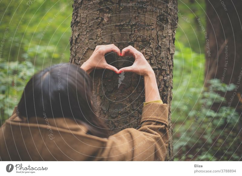 A hand forms a heart on the trunk of a tree in the forest. Nature conservation. closeness to nature Environmental protection Tree Forest Heart Love