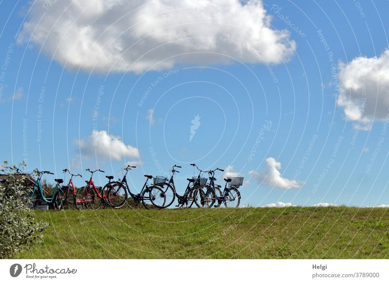 Bicycle parking - many bicycles stand on a path in front of the dunes Wheel Cycling Bicycle lot Exterior shot Meadow Clouds Sky Bushes Island North Sea Islands