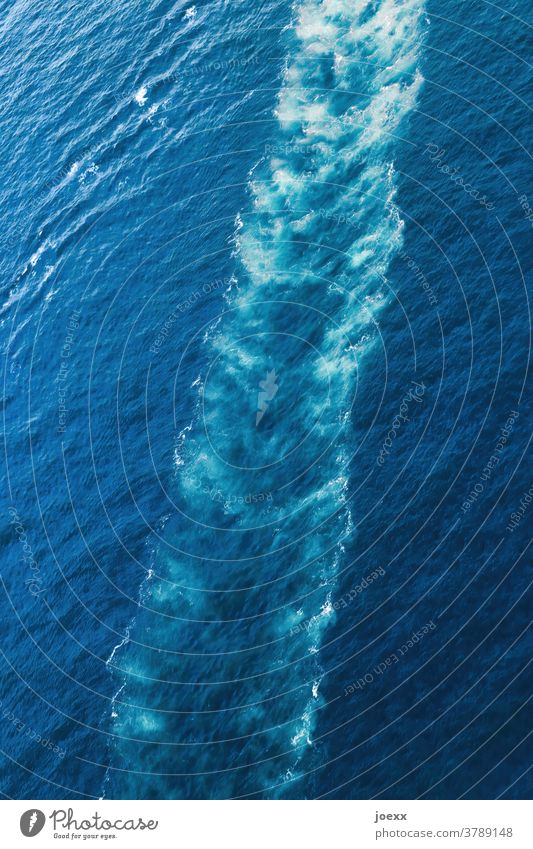 Track of a ship in sea water Aerial photograph Ocean trace Water White crest Blue Bird's-eye view Exterior shot Deserted Waves Day Colour photo Above Diagonal