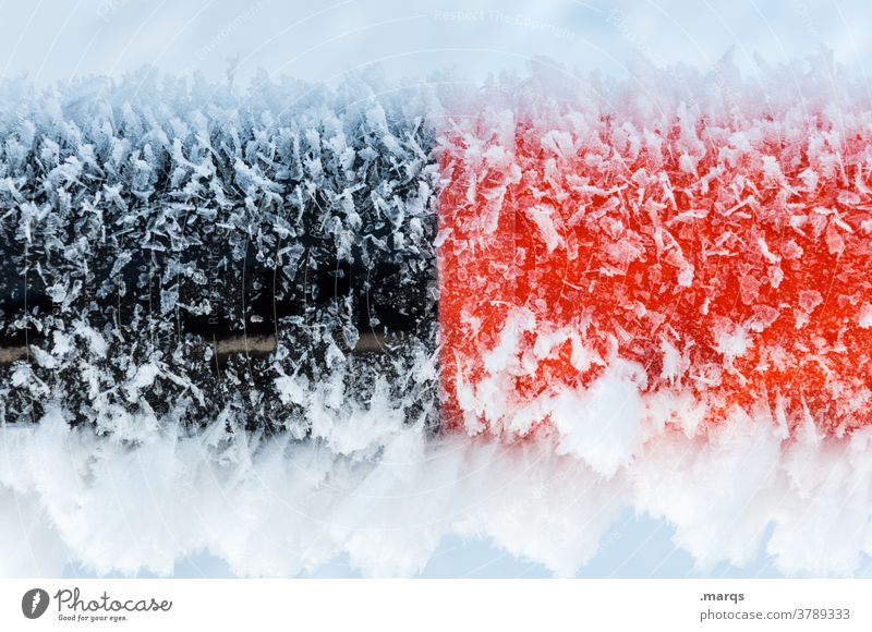 Black red freezes anode cathode Ice Frost chill Winter Red Snow Frozen Cold Ice crystal Freeze