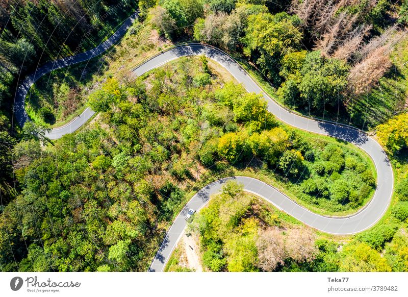 a curvy forest road from above car car from above forest from above street from above concrete summer countryside transportation sun shadow