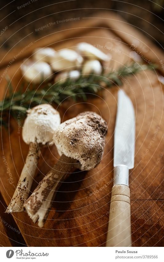 Edible mushroom Macrolepiota procera Mushroom Environment Nature Autumn Close-up Forest Colour photo Detail Shallow depth of field Brown Green Food fall fungus