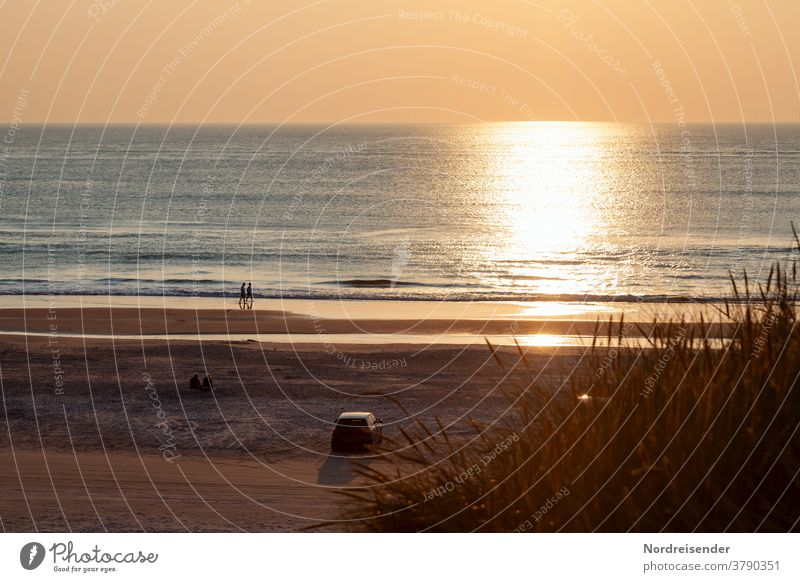 Summer evening on the beach of the North Sea in Denmark Beach Ocean Water Sun Evening People To go for a walk duene car Moody Back-light Sunset wave warm