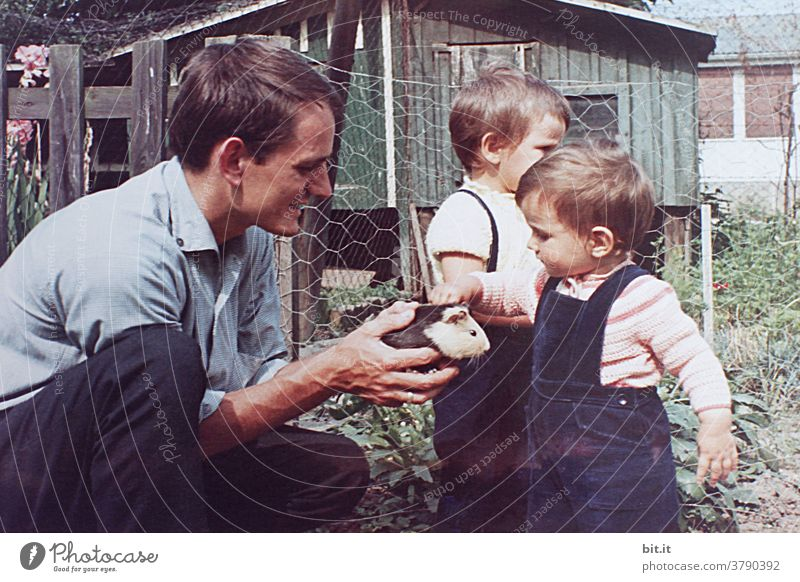 The guinea pig in grandpa's garden. Child Infancy Childhood memory Parenting children Garden Girl Cute Small Human being Playing Joy Happy Toddler Happiness