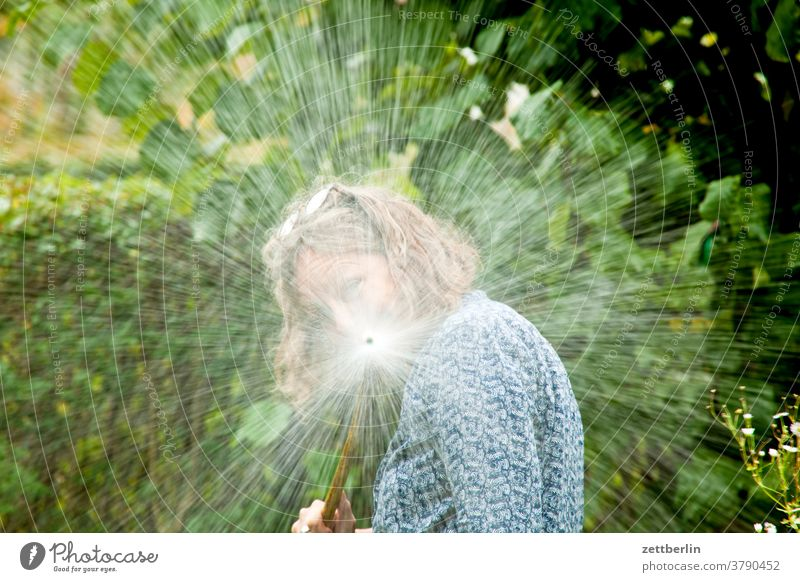Woman with water hose Relaxation holidays Garden allotment Garden allotments Nature Plant tranquillity Garden plot Summer shrub Copy Space Depth of field Meadow