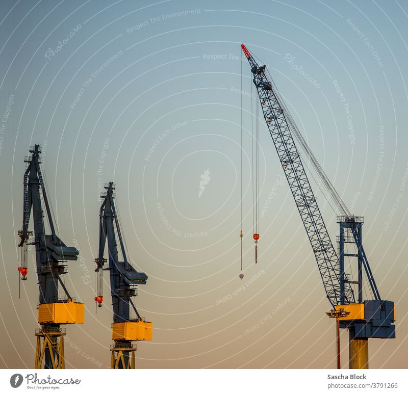 3 crane docks at the port of Hamburg 2018 Summer Crane cranes Industry Industrial plant transportation Harbour port work Container container terminal Dock