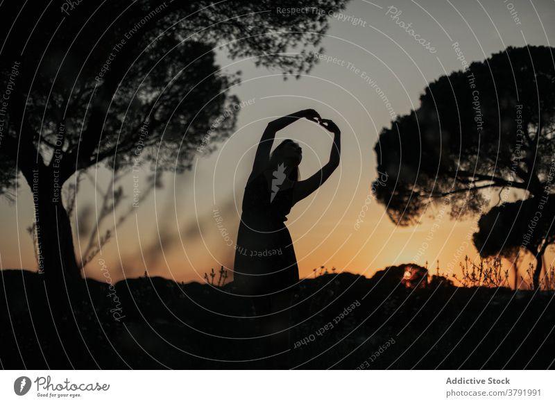 Unrecognizable female ballet dancer in park at sunset ballerina silhouette woman posture grace dark iceland meadow dusk field nature sundown stand freedom