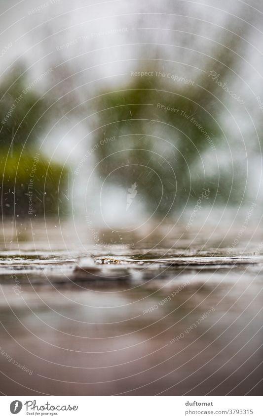 Macro shot of raindrops pattering on the ground Macro (Extreme close-up) Rain Wet Drop Water Nature Drops of water Close-up Detail Exterior shot Weather