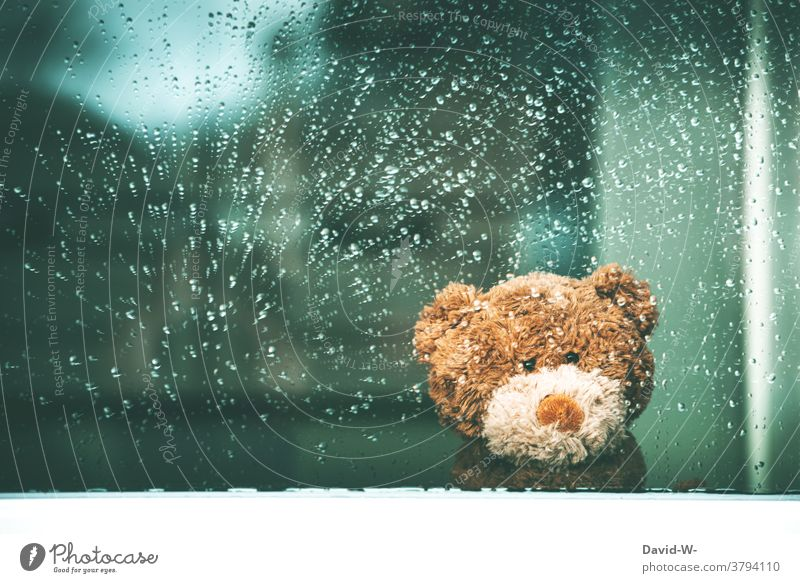 Rainy weather - Teddy bear sits at the window and waits for better weather cuddly toy Wait Window Window pane inside Sadness Autumn Wet raindrops Bad weather